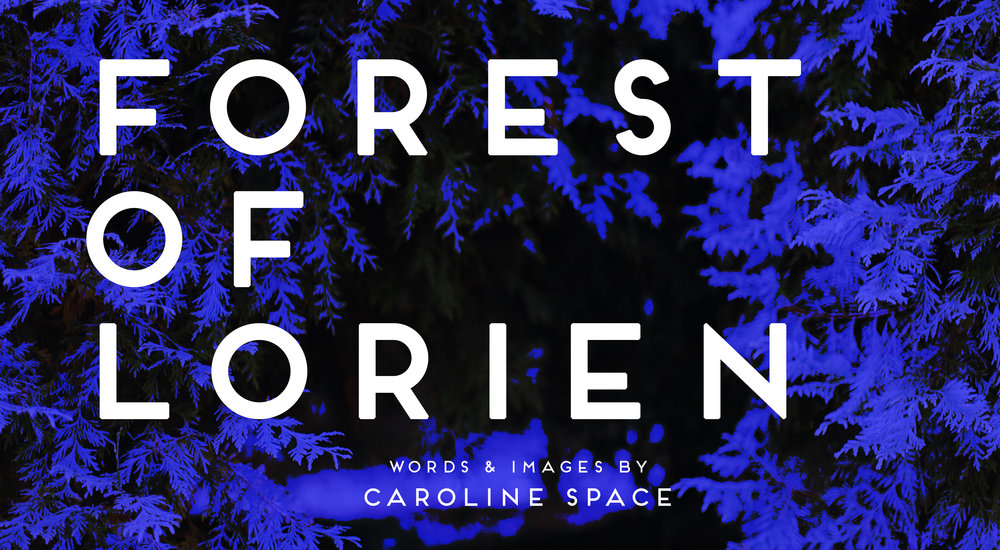 forestoflorien.jpg