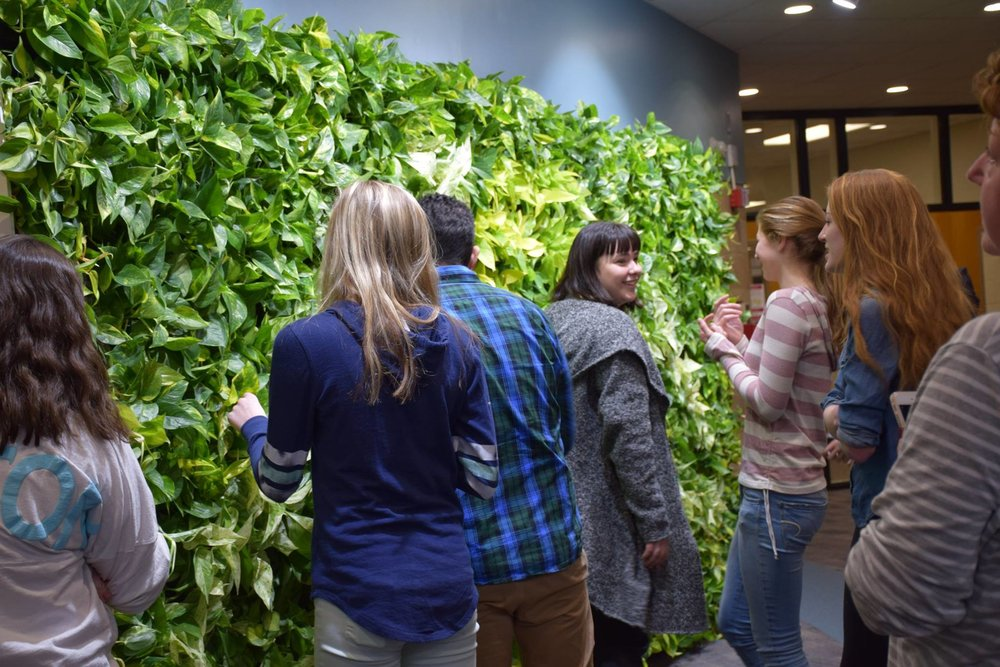 "Colin Decker's ""Living Wall"" at Shepaug"
