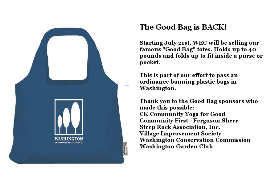 good bag for website.png