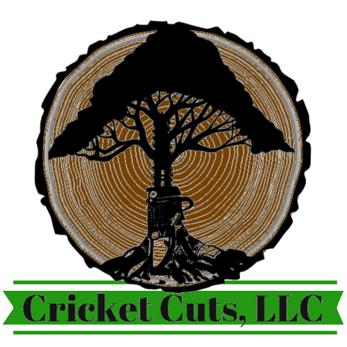 Cricket Cuts, LLC
