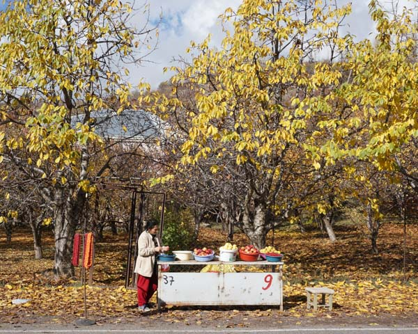 By our trip in November, Armenia was well into apple season. On the way to Geghard, we passed by hillsides that held a patchwork of fruit orchards. On our way back into town, we stopped here and bought apples.