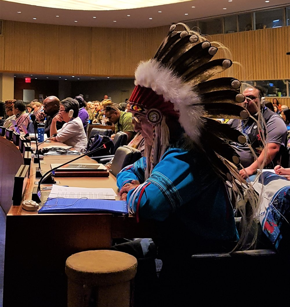 Grand Chief Wilton Littlechild at the United Nations Permanent Forum on Indigenous Issues, 2017