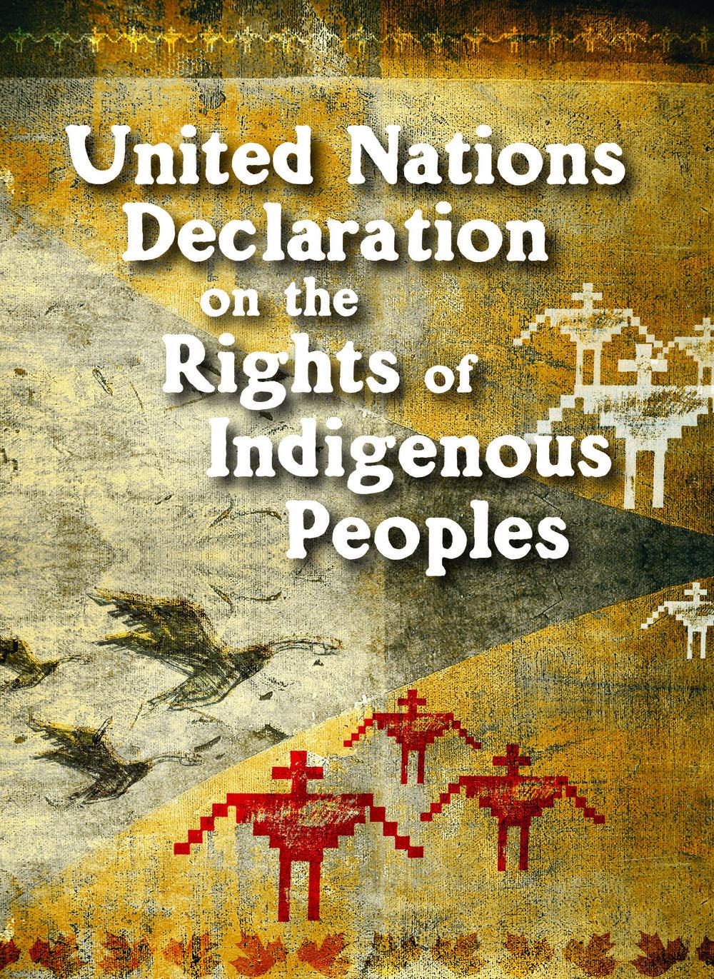 UN Declaration cover.jpg