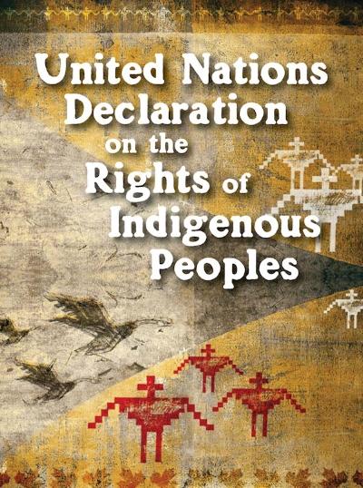 UN Declaration Pocket booklets -
