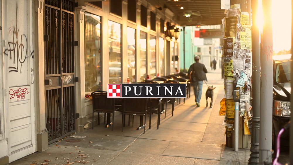 Purina | What Would You Say?