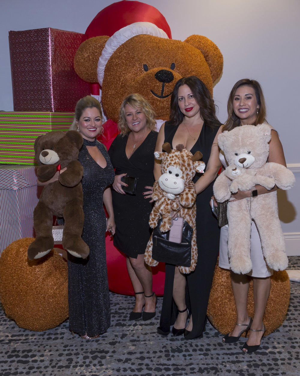 Teddy Ball 2017-0113-20171125-2.jpg