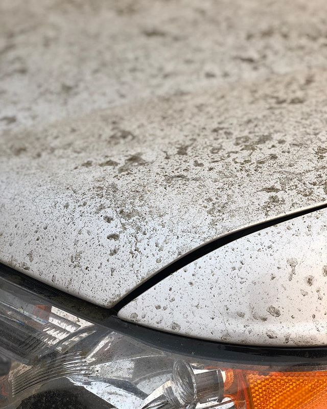 When you don't wash your car for almost a year... 📍@fostercitycarwash, CA • #washlife #stayproperlyclean #fostercitycarwash #bayarea #fostercity #carwash #carwashing #carwashday #carwashtime #autocare #carcare #wraps #macneil #expresscarwash #fullservice #autodetailing #oxidation #dirty #detailersofinstagram #detailingworld