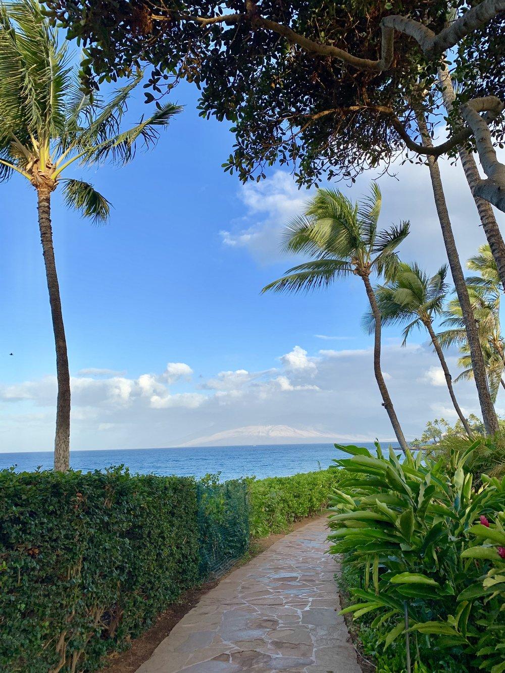Pathway by Wailea Beach