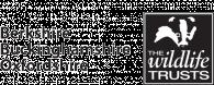 logo_black_text_large.png