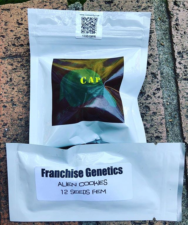 Silent Auction for 2 packs. . Bids accepted by email only. . Send bids to info@getseedsrighthere.com. . You are bidding on 2 packs in 1 auction.  1 pack of Capulator's Miracle Alien Cookies. 1 pack of Franchise Genetics Alien Cookies. .  Starts now ends on 7/12 at noon Denver time.