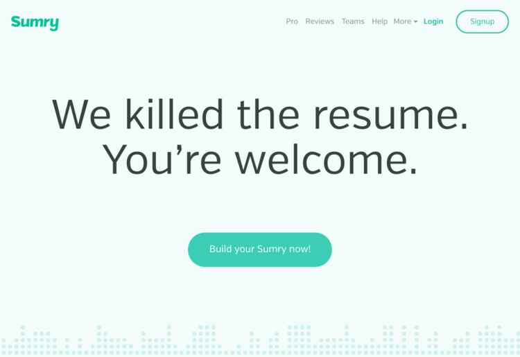 sumry the resume killer by behrouz jafarnezhad perspective