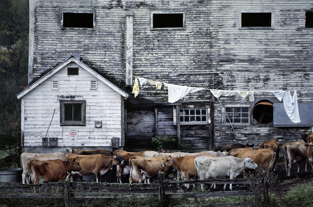 Vermont, 1973