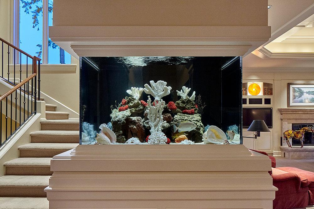 Fish Tank 1 Sm.jpg