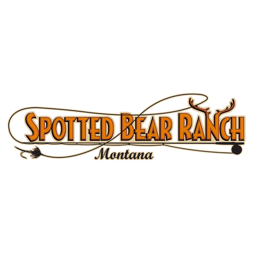 spotted-bear-logo.png