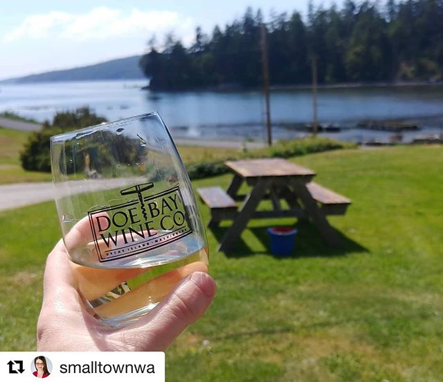 Thank you @smalltownwa! ・・・ Super excited about my giveaway with @salishseatourco. What are we giving away? A tour for two and a $25 gift certificate with @doebaywinecompany. Click the link in my profile to enter! * * * #dreambigtravelsmall #smalltownwa #orcasisland #visitsjislands #sanjuanislands #travel #travelgiveaway #explorewashington #experiencewashington #foodie #history #wine #travelblogger #travelwriter