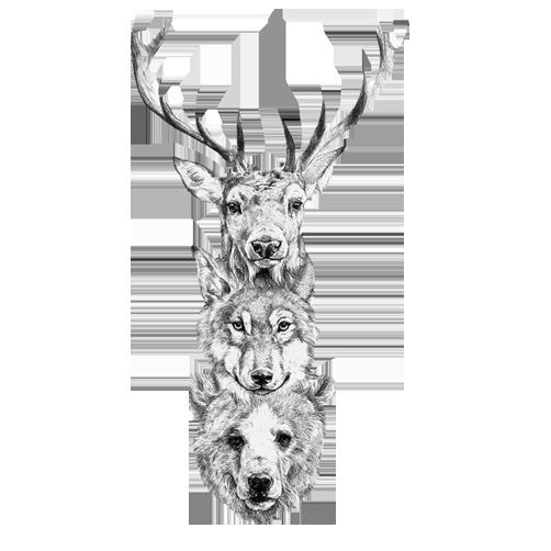 kisspng-red-deer-bear-gray-wolf-elk-wolf-bear-deer-head-creative-assembly-5a91f979bb1448.7834457215195160257663.png