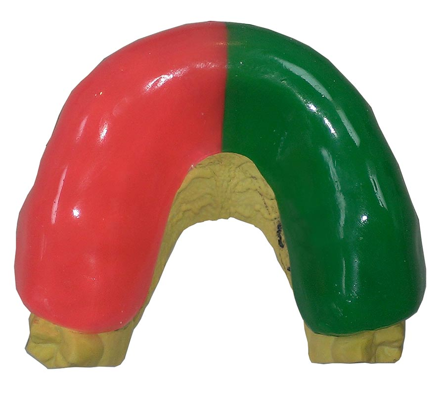 Mouthguard-two-colour.jpg