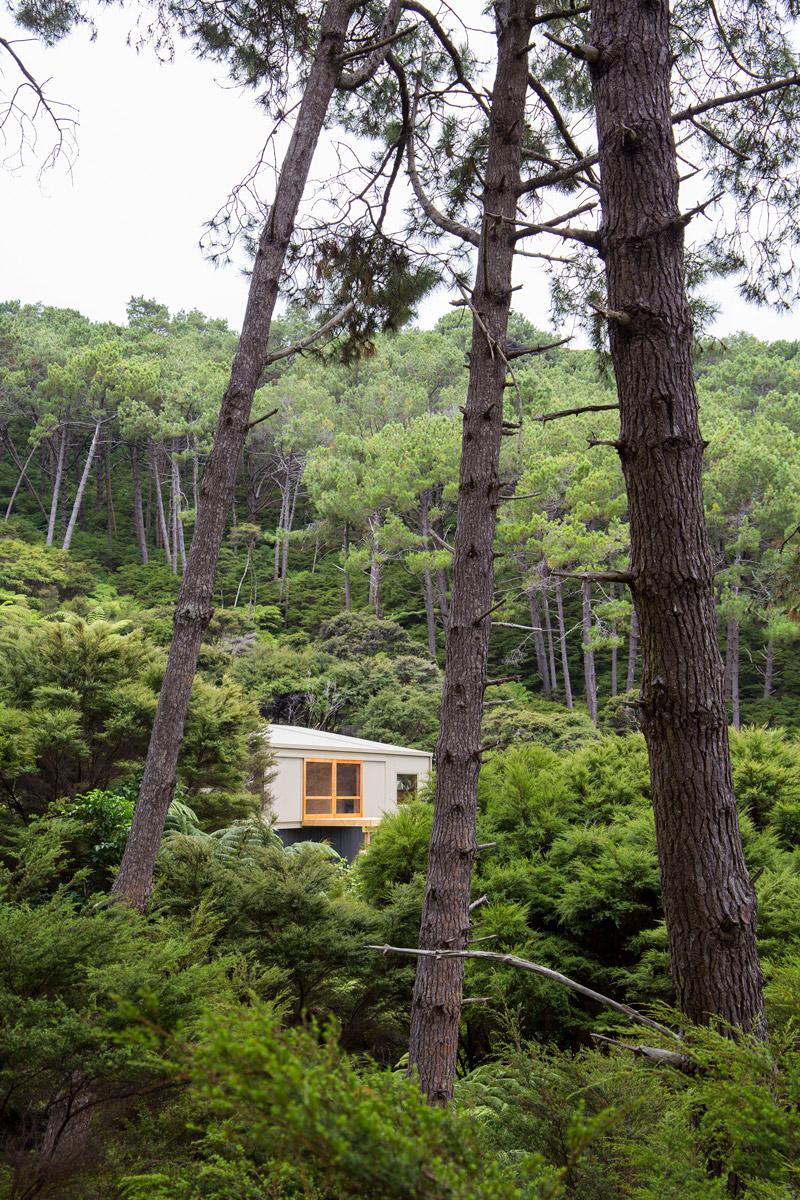 Motu-Kaikoura_In-the-Landscape.jpg