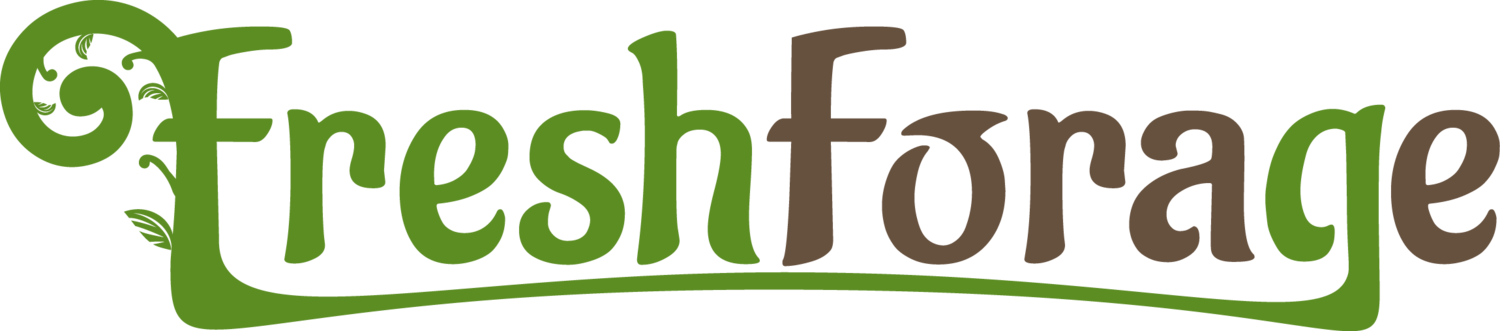 Fresh Forage | Local, Healthy Restaurant in Ann Arbor