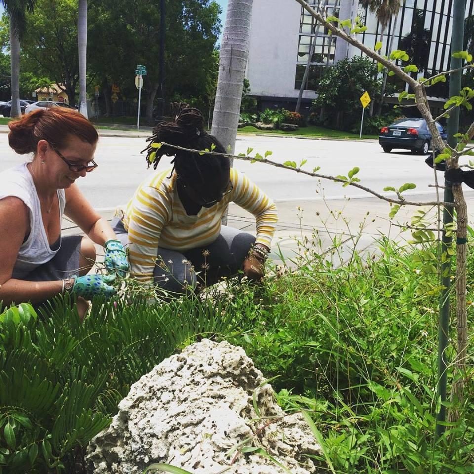 Front Step Gardening, 5810 Biscayne, 2016
