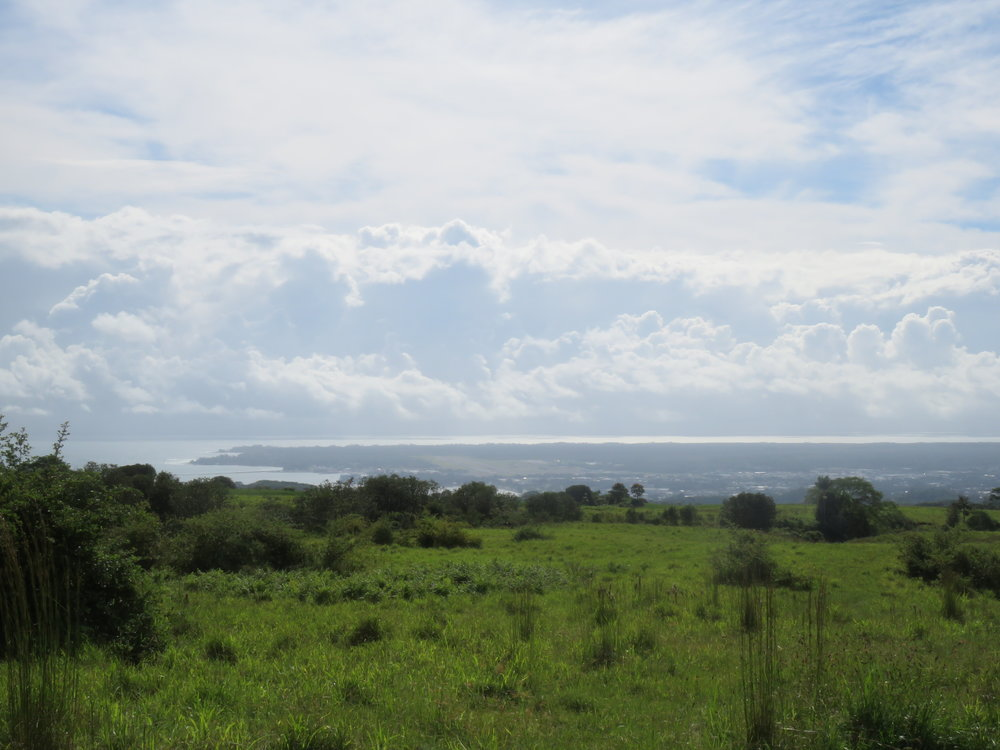 Lot 26 Hilo View