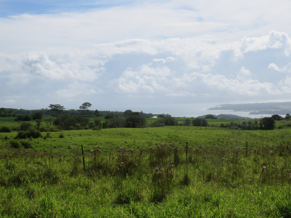 Lot 22 view of Hilo Bay