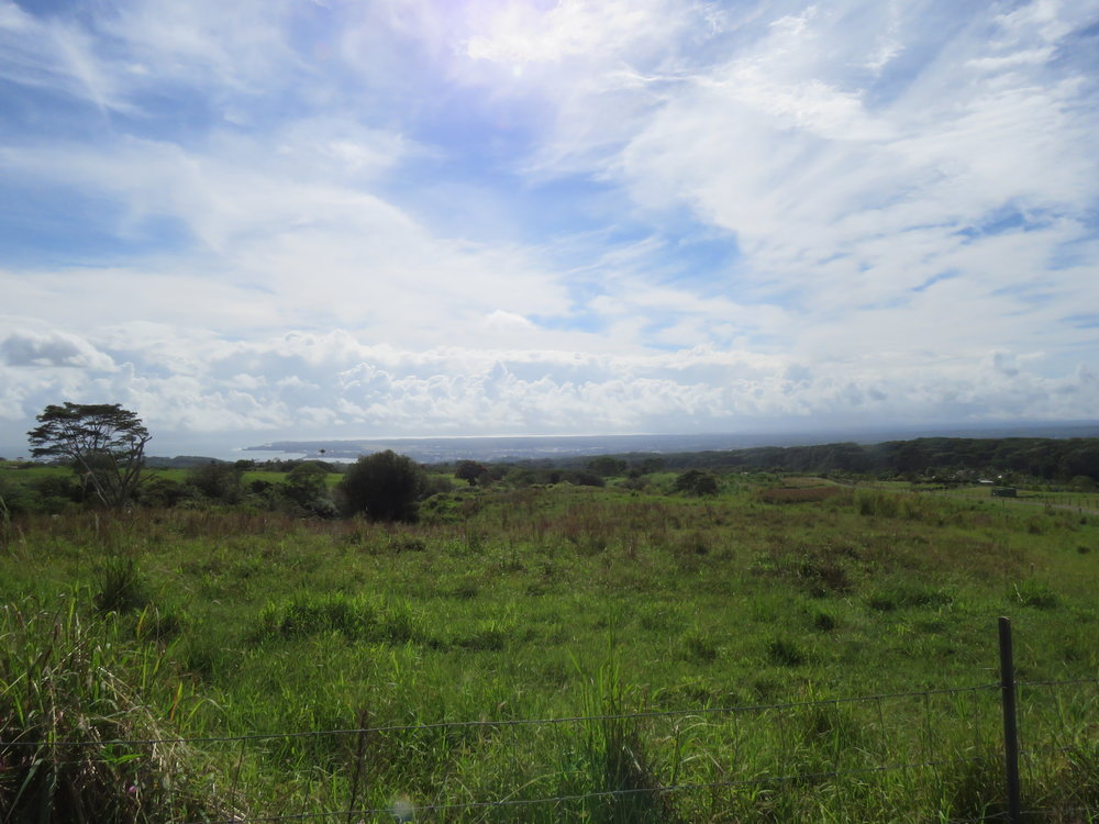 Lot 23 Hilo View
