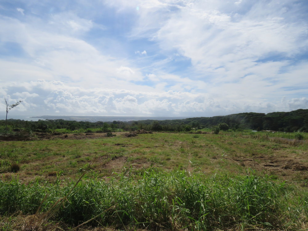 Lot 24's Hilo View