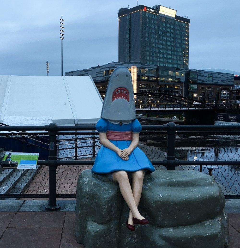 Shark Girl Instagrammable Buffalo New York