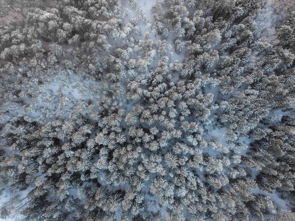 Aerial-33.jpg