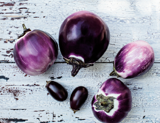 aubergines.png