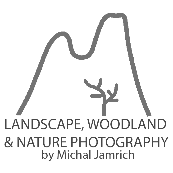 LANDSCAPE, WOODLAND & NATURE PHOTOGRAPHY