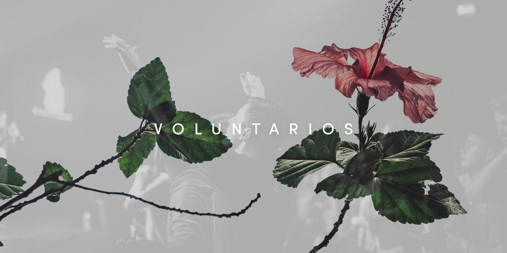 Voluntarios Banner.jpg