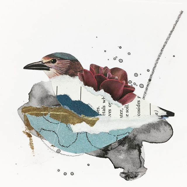 Nest/Home/Settle/Rest : : : #collageartist #collagewave #rest #collageart #yyjarts #vintageimages #miniart #kolajmagazine #instaart #handcutcollage #originalart #artistsoninstagram #collagear #jessadupuisart #femaleartist #edinburghcollagecollective #collagecollectiveco #birdnest #vancouverislandartist #settle #jealouscurator #createmagazine #mixedmediacollage