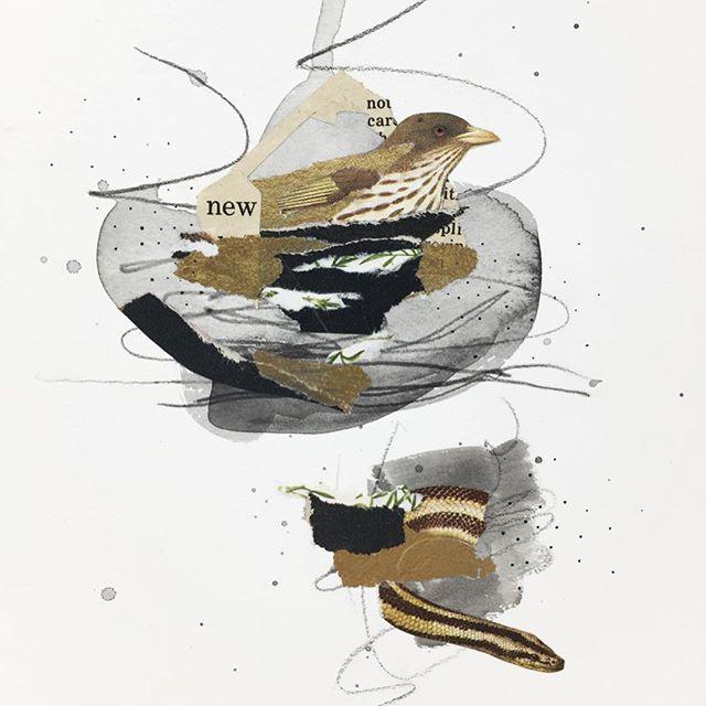 This must be the place / New home found. : : : #collageartist #collagewave #rest #collageart #yyjarts #vintageimages #miniart #kolajmagazine #instaart #handcutcollage #originalart #artistsoninstagram #collagear #jessadupuisart #femaleartist #edinburghcollagecollective #collagecollectiveco #birdnest #vancouverislandartist #settle #jealouscurator #createmagazine #mixedmediacollage