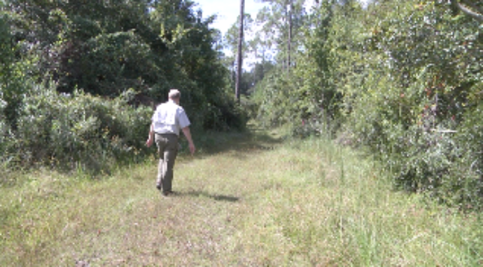 """City of Gainesville and Alachua County co-purchase conservation land"" - By WCJB 20, Sep. 28, 2018"