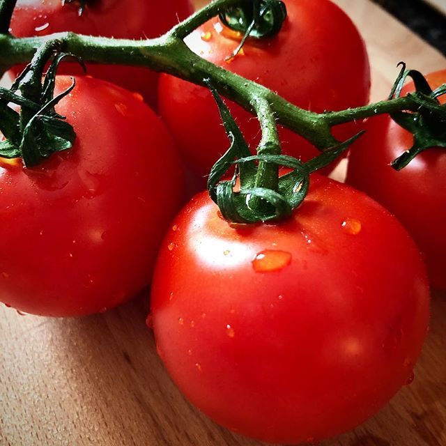 On the vine. . . . #tomatoes #onthevine #fresh #yum #eat #enjoy #choice #nyc #veg #veggies #grow