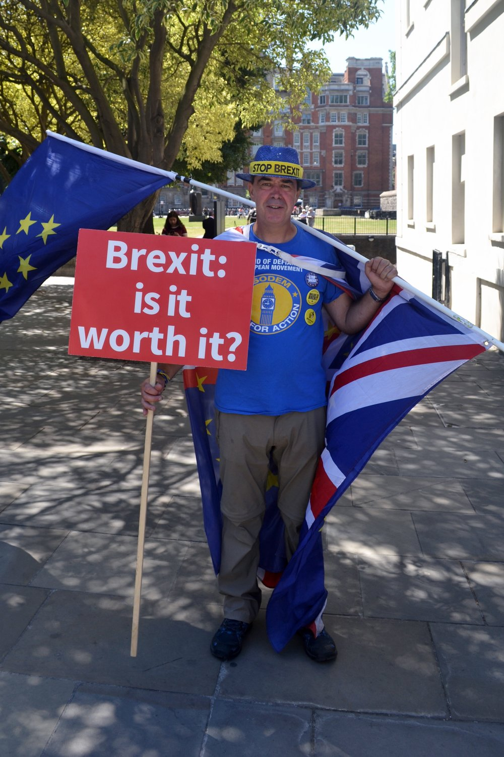 Brexit demonstration participant by College Garden