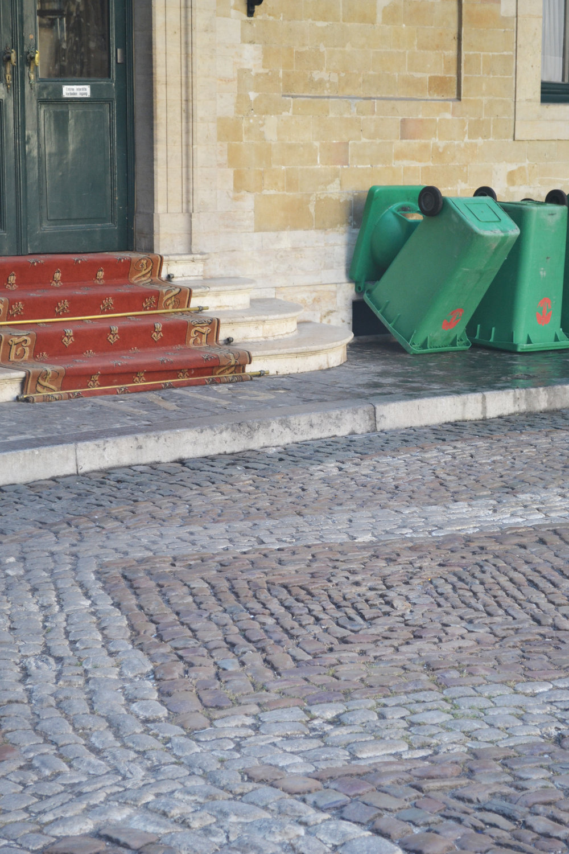 Red Carpet/ Trash