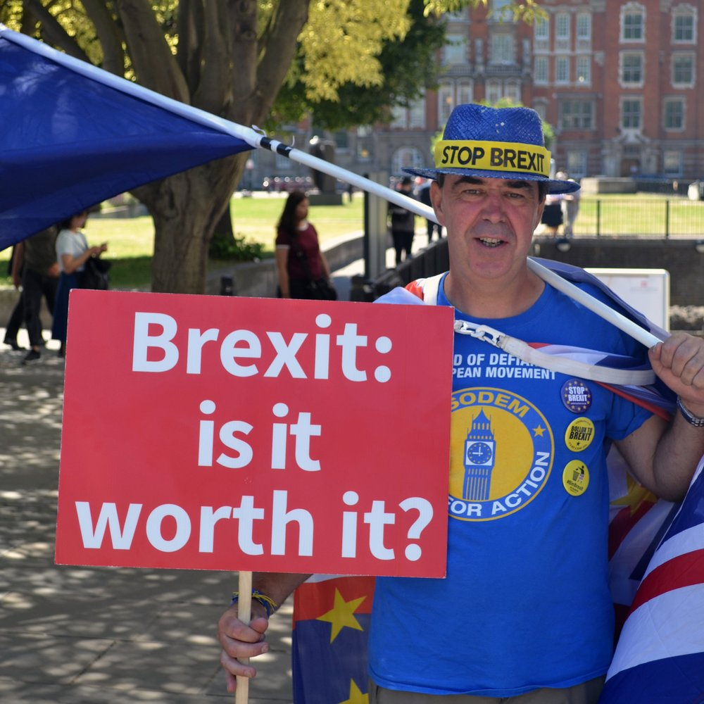 Political Expression: Brexit -