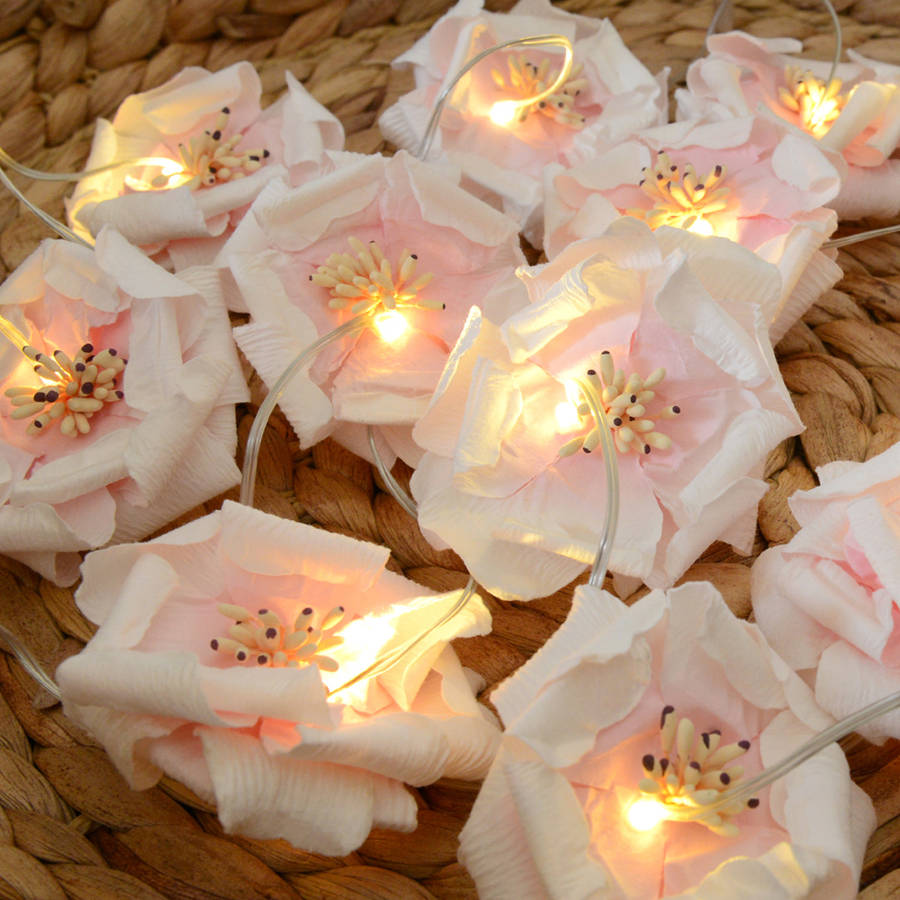original_rose-fairy-lights
