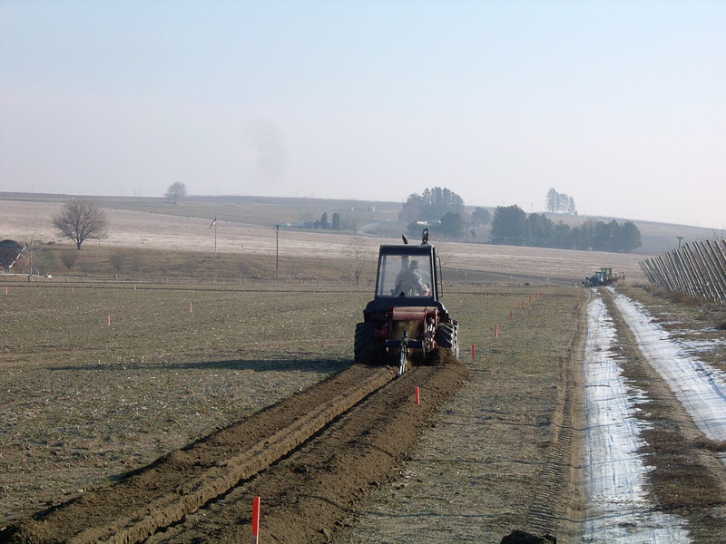 Water line vineyard.jpg