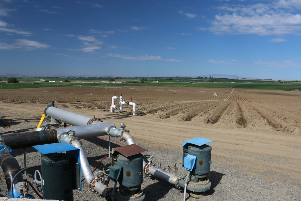 Irrigation pad.jpeg