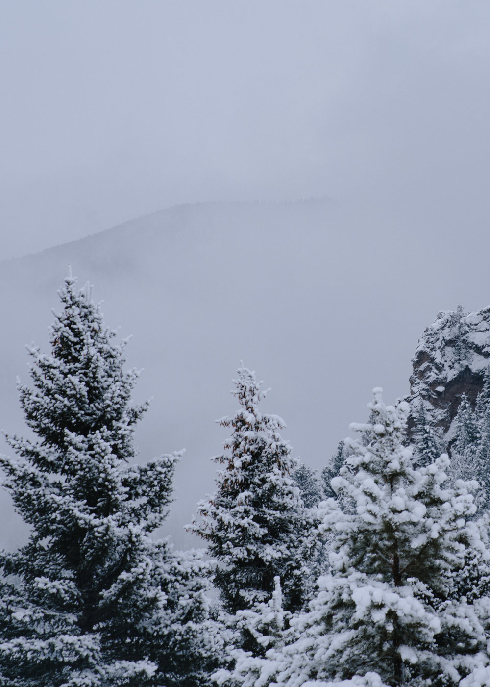 The clouds roll in below the meadow for a new storm, Montana is having an epic year.