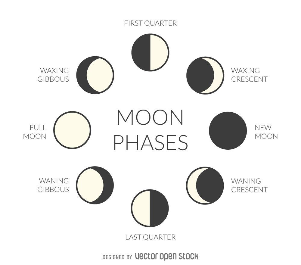 299bb9c20f156020305e519c468d8f02-illustrated-moon-phases.jpg