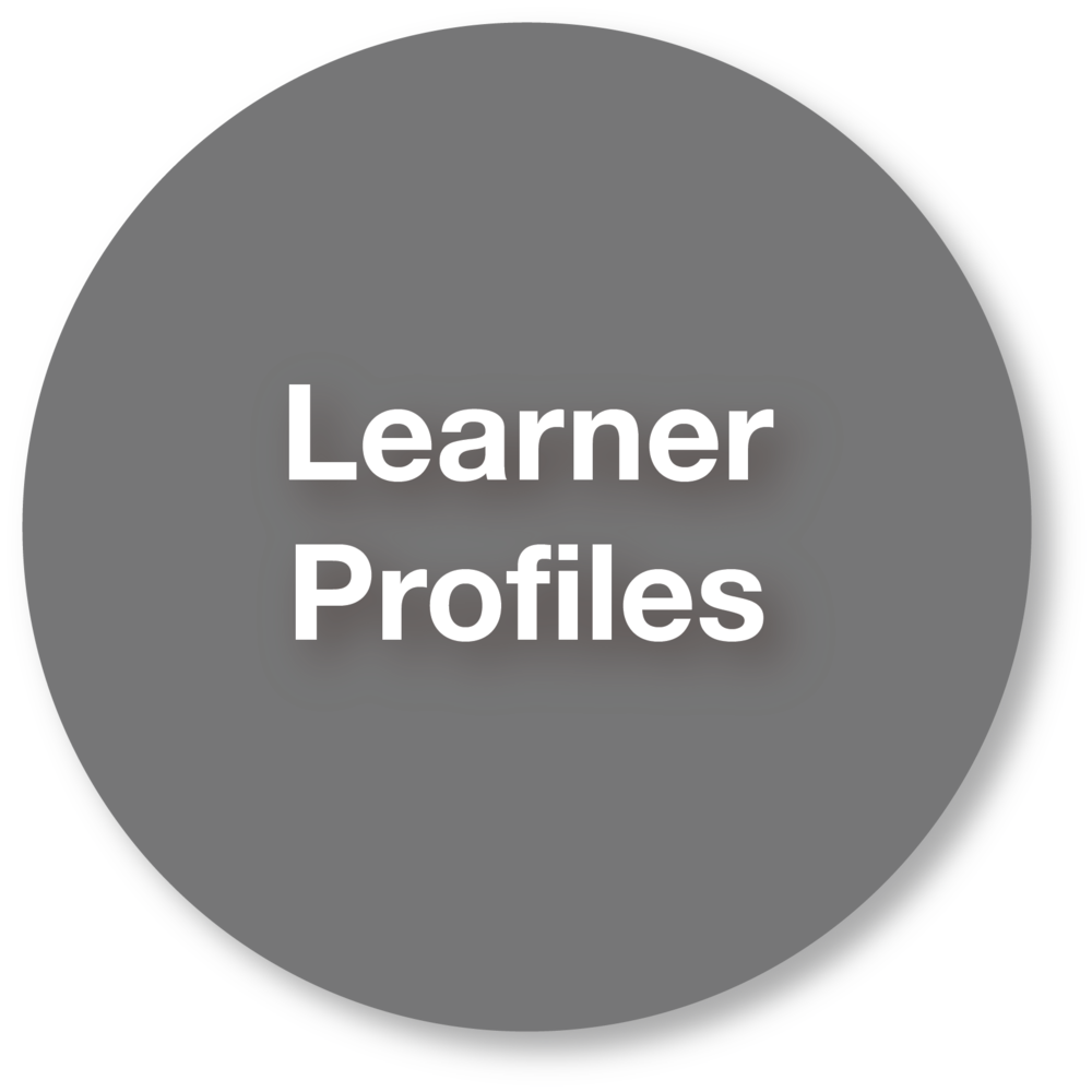 PLcomp-Learner.png