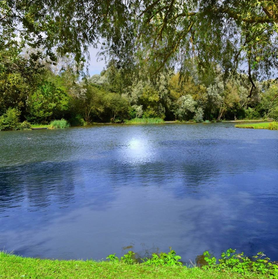 Pond Water Treatment - At Central Soft Water Systems, we provide complete water support systems to help you create clean water in your home or business, both inside and outside.