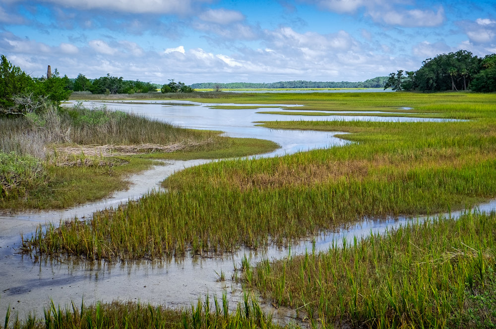 Pinckney Island Marsh