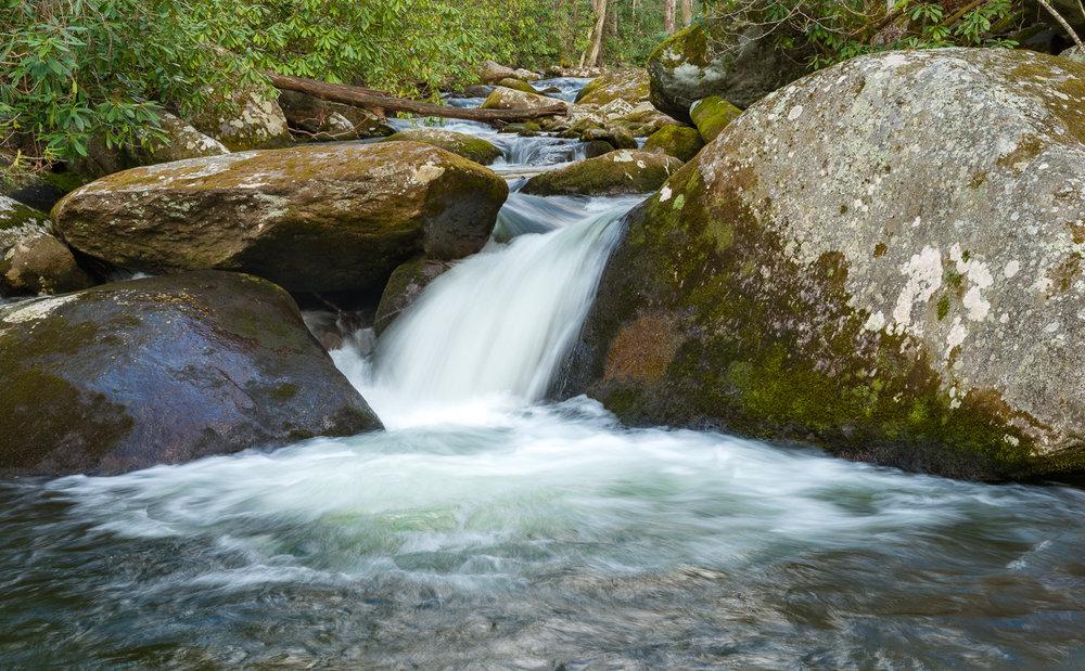 Upper Prong Trail