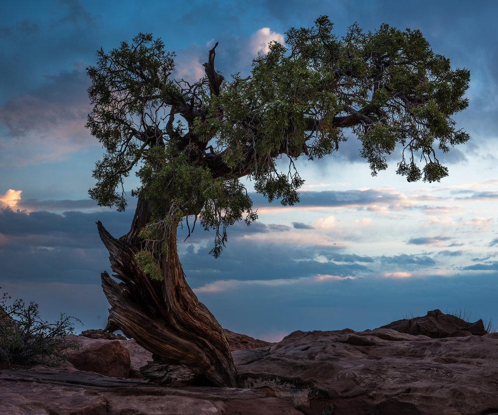 Perseverance Canyonlands-1.JPG